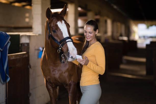 jockey femenino utilizando teléfonos inteligentes estando a caballo - caballo familia del caballo fotografías e imágenes de stock