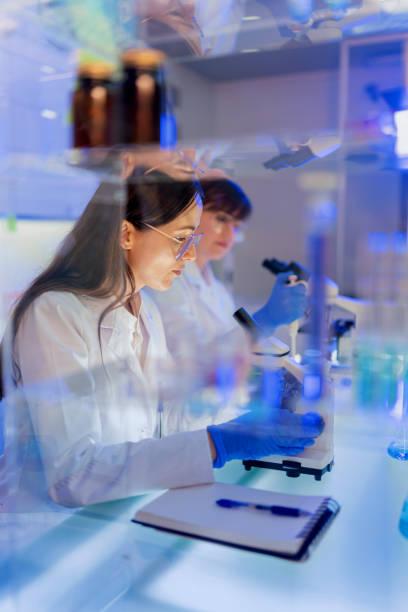 Female laboratory team working with pathogen samples. Using microscope stock photo