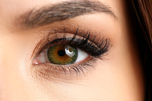 female left emerald green coloured eye extreme closeup - eyelid stock photos and pictures