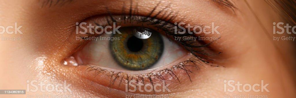 Female left emerald green coloured eye extreme closeup stock photo