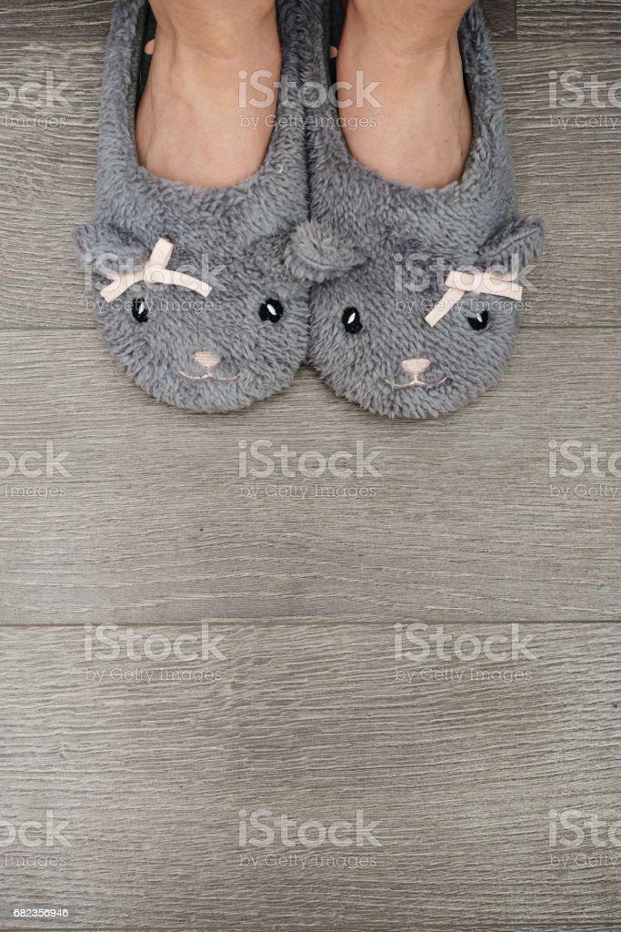 Female legs in slippers royalty free stockfoto