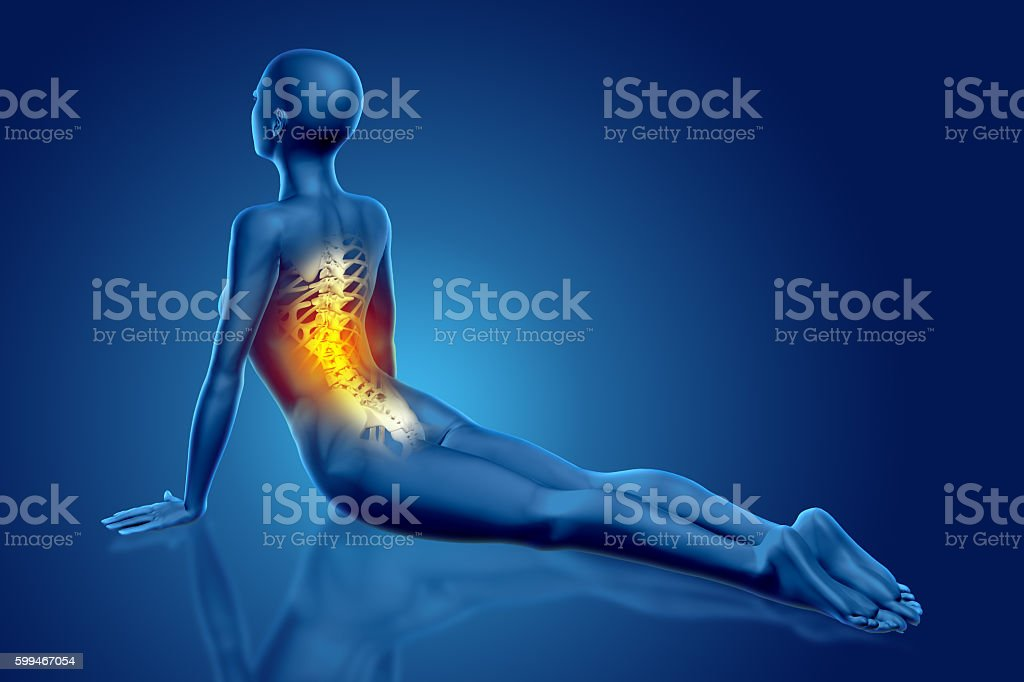 3d Female Medical Figure In Yoga Pose With Backbone Highlighted ...