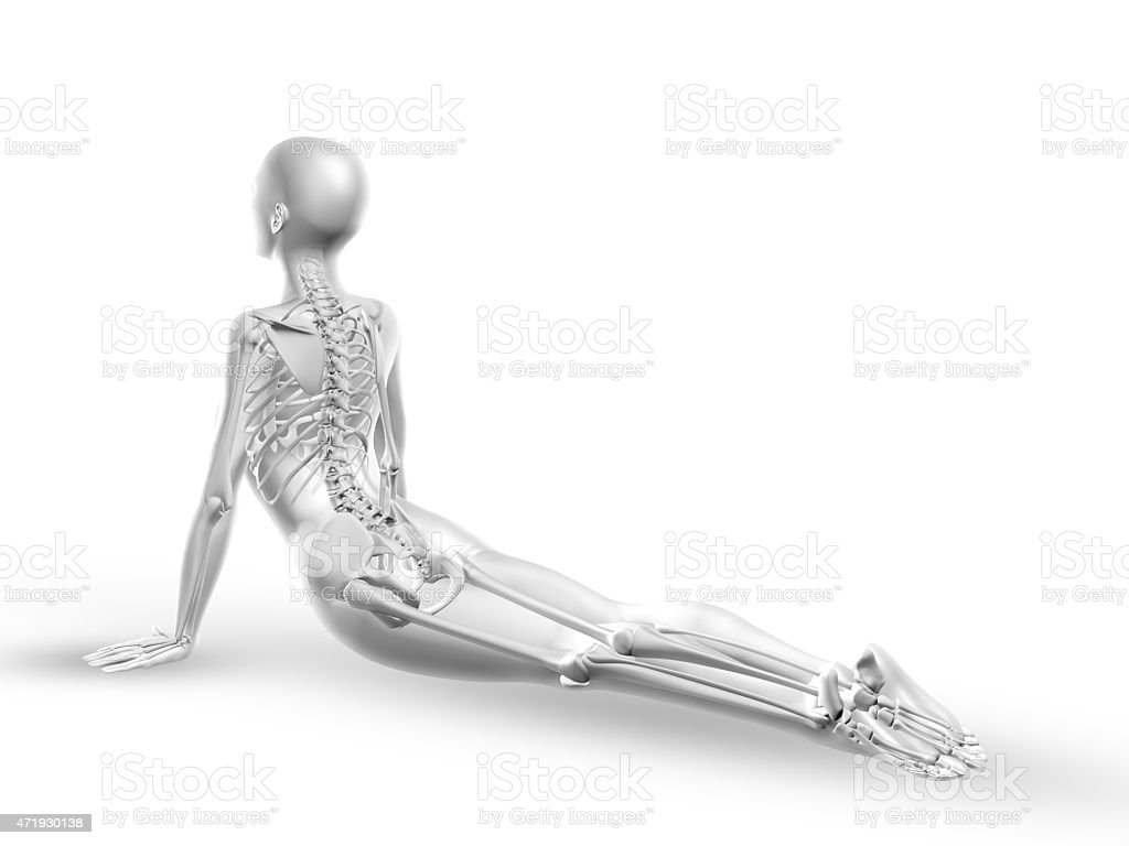 3D female medical figure with skeleton in yoga position stock photo