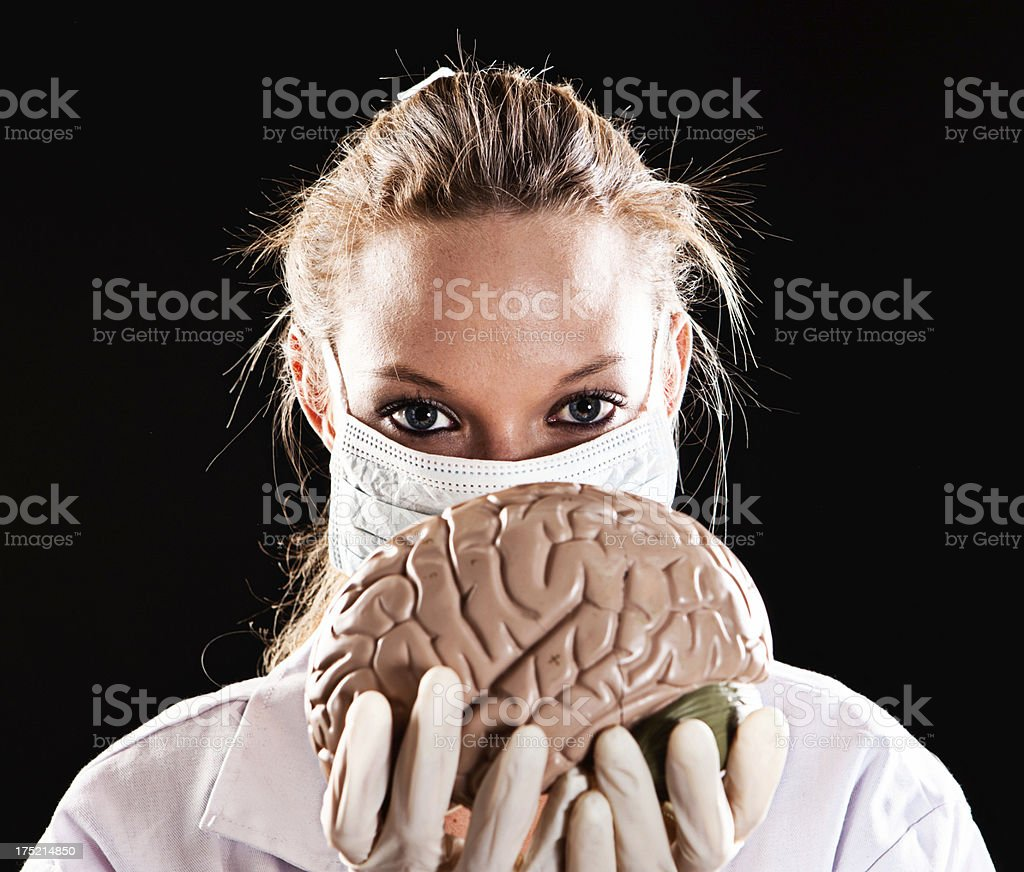 Female medical professional looking over model of human brain stock photo