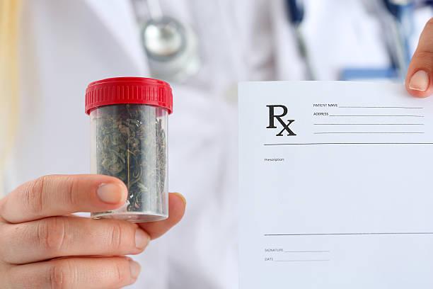 female medicine doctor hand hold medical marijuana - lieblingsrezepte stock-fotos und bilder