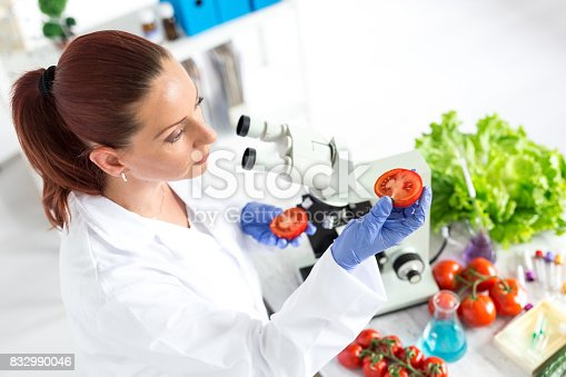 Female microbiologist making researches on tomato in laboratoty.