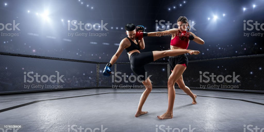 Female MMA fighters in professional boxing ring stock photo