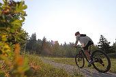 istock Female mountain biker travels along footpath 1036785002