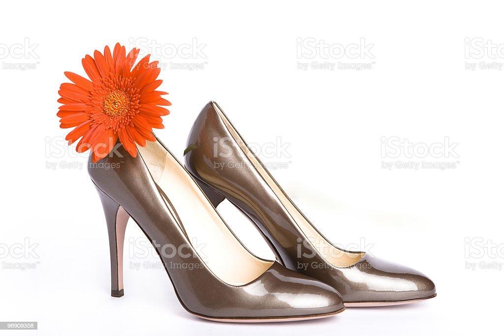 female new varnished shoes royalty-free stock photo