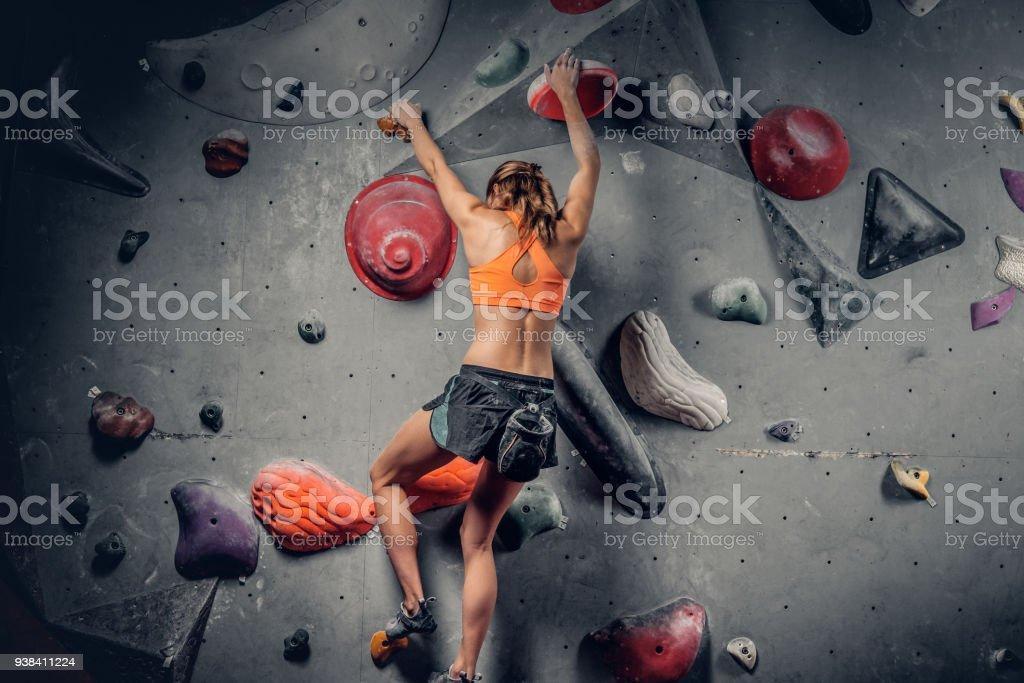 Weibchen auf indoor-Kletterwand. – Foto