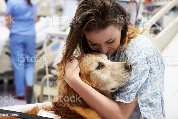 Female patient hugging a therapy dog in a hospital picture id465131587?b=1&k=6&m=465131587&s=612x612&h=xfpdfklywpvddzwqwvjbh9g cr9a9uyuftly2vbsfrm=