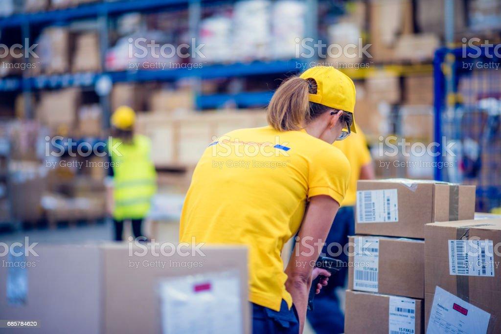 Female postal worker handling packages Стоковые фото Стоковая фотография