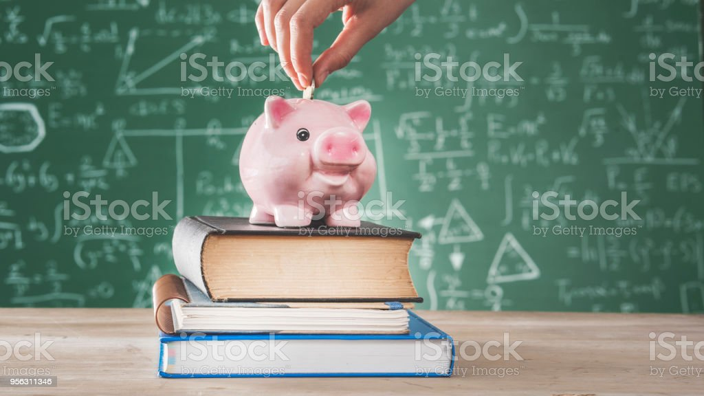 Female putting coin into piggy bank stock photo