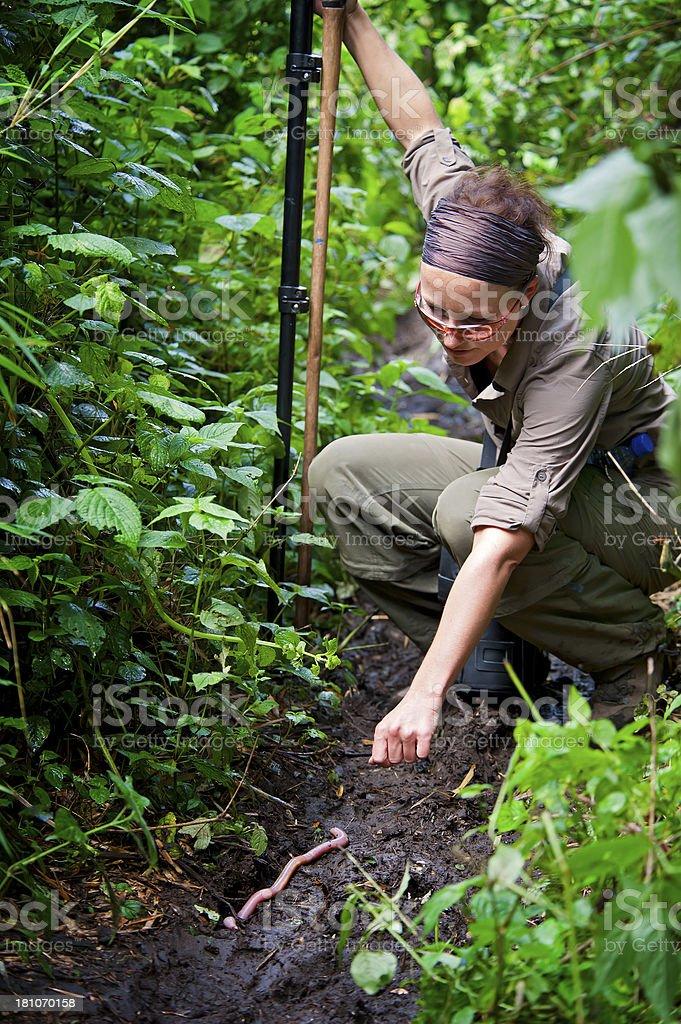 Femelle chercheur dans la zone verte de la jungle, Rwanda, Afrique - Photo