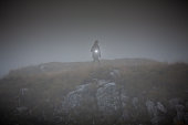 Female Researcher Walking Across Mountain Top with Flash Light - Stock Photo