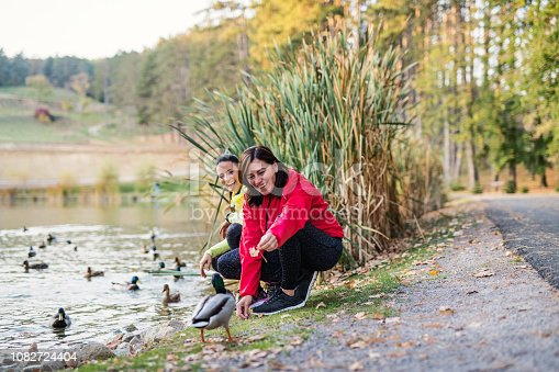 Two female runners by the lake outdoors in park in nature, feeding ducks when resting.