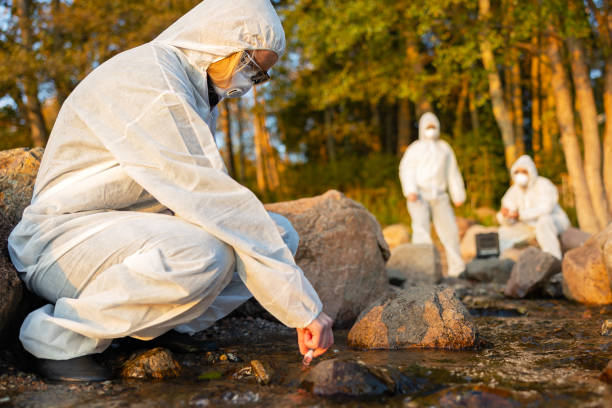 Female scientist collecting water sample from sea stock photo