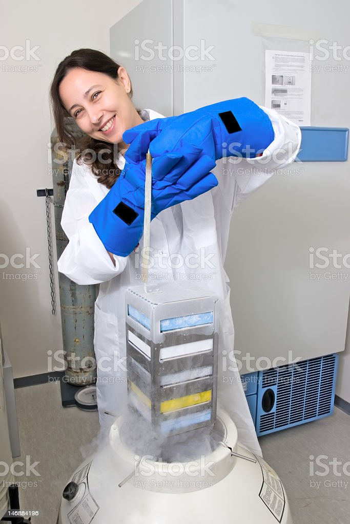 Female scientist freezing tissue culture in liquid nitrogen stock photo