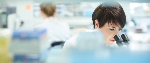 kobieta naukowiec w zapracowanym laboratorium badawczym - laboratorium zdjęcia i obrazy z banku zdjęć