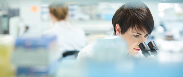 female scientist in a busy research lab stock photo