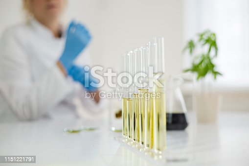 istock Female scientist in a laboratory working with cbd oil extracted from a medical marijuana plant. She is checking the marijuana plant. Healthcare pharmacy from medical cannabis. 1151221791