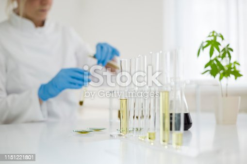 istock Female scientist in laboratory testing cbd oil extracted from a marijuana plant. She is using a various glass tubes and bowls for the experiment. Healthcare pharmacy from medical cannabis. 1151221801