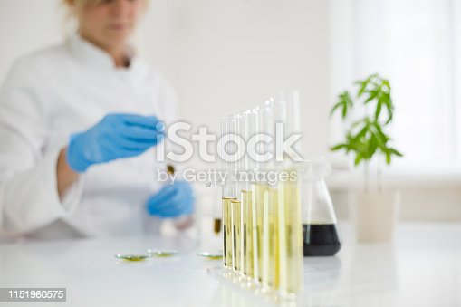 istock Female scientist in laboratory testing cbd oil extracted from a marijuana plant. She is using a various glass tubes and bowls for the experiment. Healthcare pharmacy from medical cannabis. 1151960575