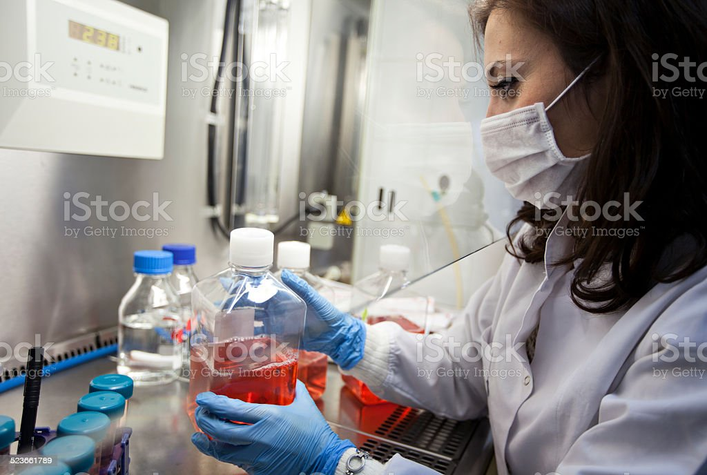 Female scientist working in lab stock photo