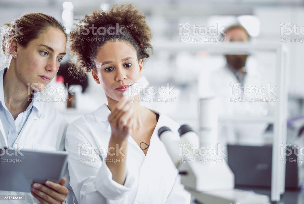 Blick auf Objektträger Wissenschaftlerinnen – Foto