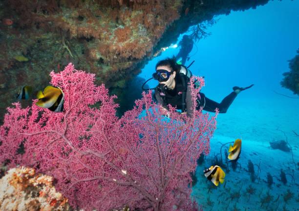 Taucher im Indischen Ozean, Malediven – Foto