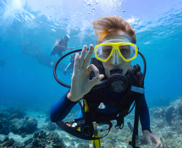 female scuba diver - underwater diving stock photos and pictures