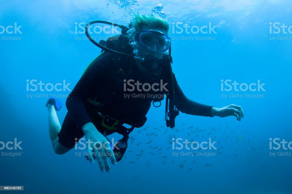 Female scuba diver up close with plain blue background and small fish behind well manicured nails in proper form with LPI hose disconnected royalty-free stock photo