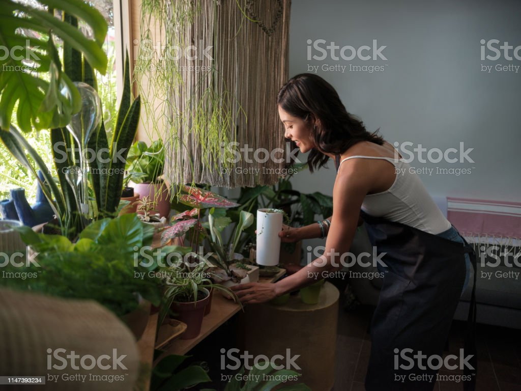 Gardien de magasin féminin tendant les usines dans un magasin de jardin - Photo de Activité commerciale libre de droits