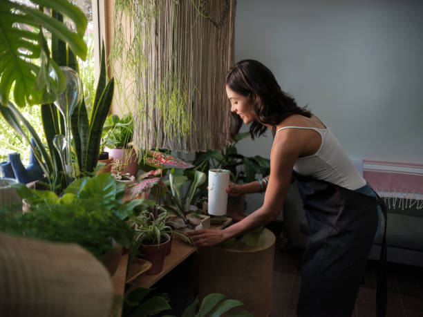 Female shop keeper tending the plants at a garden store stock photo