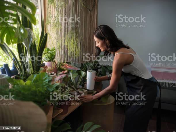 Photo libre de droit de Gardien De Magasin Féminin Tendant Les Usines Dans Un Magasin De Jardin banque d'images et plus d'images libres de droit de Activité commerciale