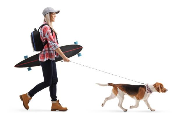 Female skater with a longboard walking a beagle dog picture id1138161688?b=1&k=6&m=1138161688&s=612x612&w=0&h=z3g6nazqvbaglb9viy5qxopbbcdnnwxqwrfcasgvjss=
