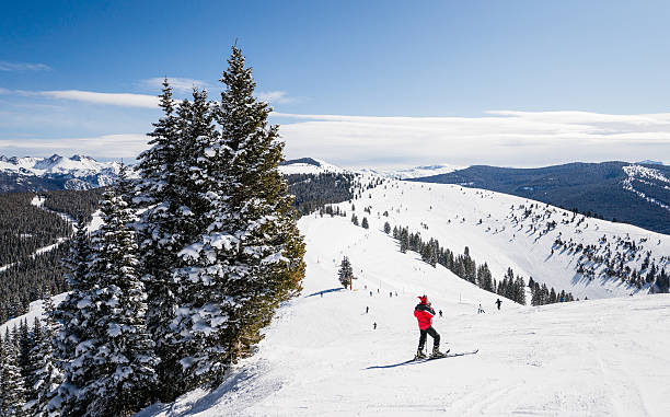 Female skier on slope looking out at Rocky Mountains Coniferous forest covered by snow with skiing slopes in the foreground and Rocky Mountains in the background. This photograph was taken in Vail, Colorado. vail colorado stock pictures, royalty-free photos & images