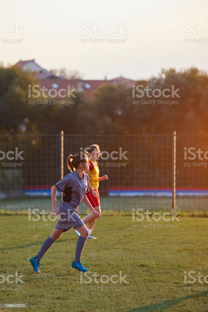 Female Soccer Referee stock photo
