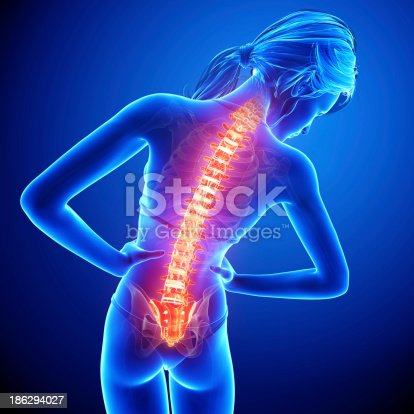 135895161 istock photo Female spine pain back view 186294027