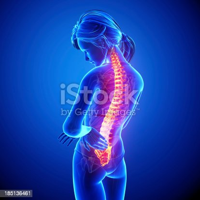 135895161istockphoto Female spine pain 185136461