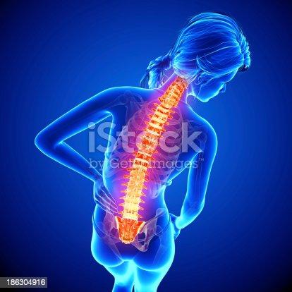 135895161istockphoto Female spine pain 186304916