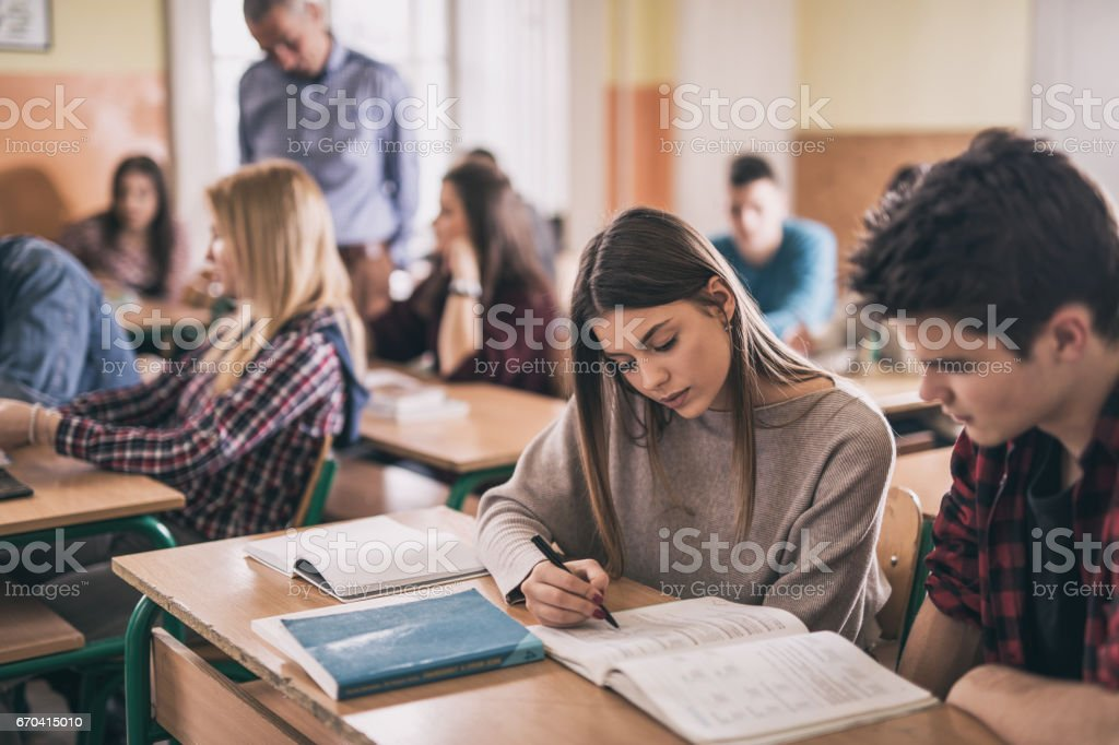 Female student and her classmate learning together in the classroom. stock photo