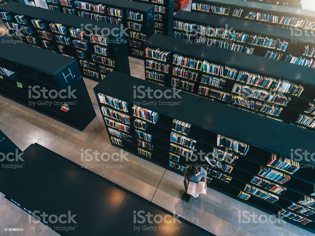 Female student at library bookshelf reading book stock photo