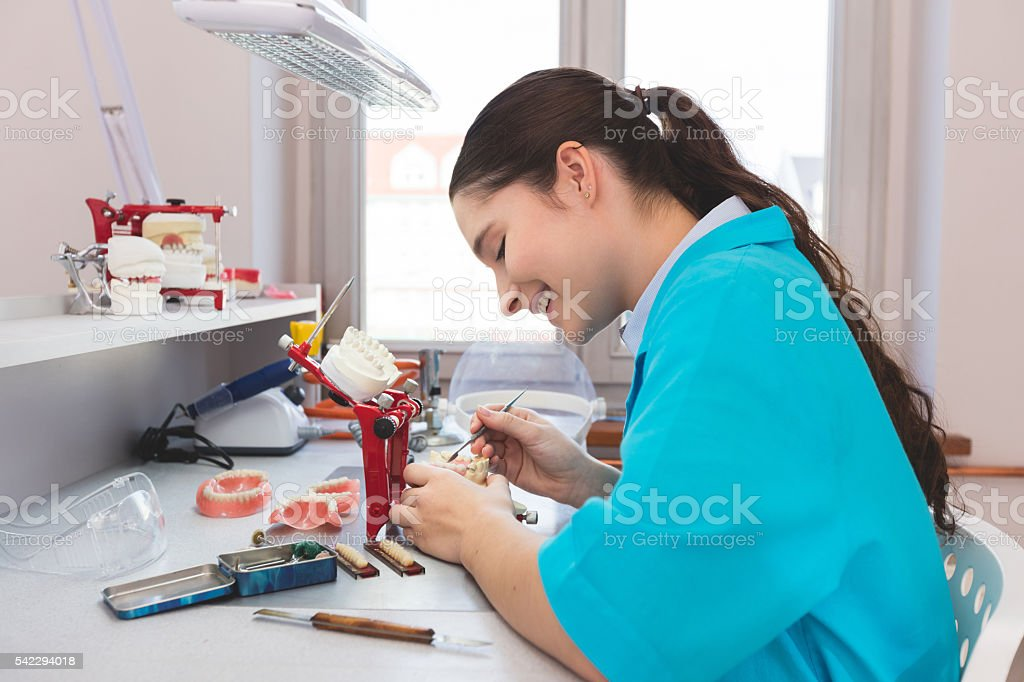 Female student learning prosthetic dentistry stock photo