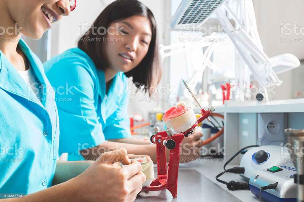 Female students learning prosthetic dentistry, focus on asian girl stock photo