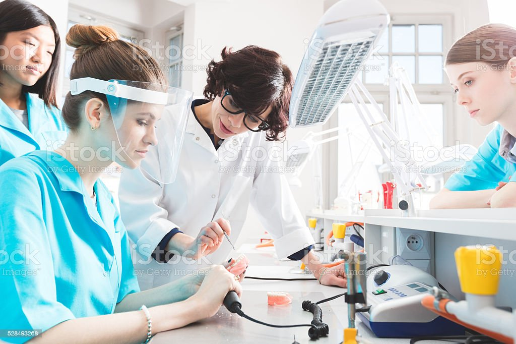 Female students learning prosthetic dentistry, talking with teacher stock photo