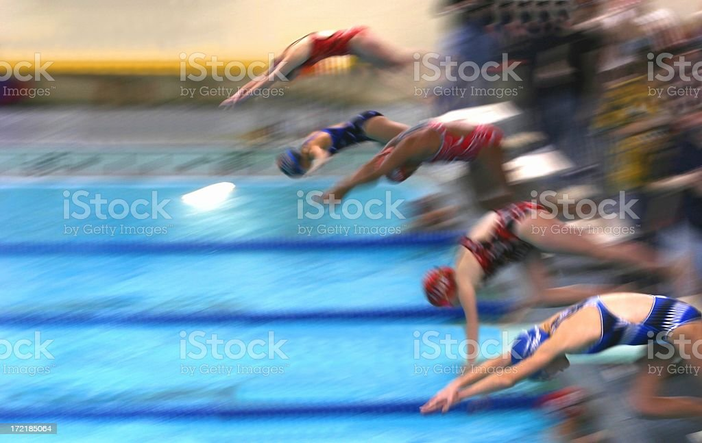 Female swimming competitors dive into the pool stock photo