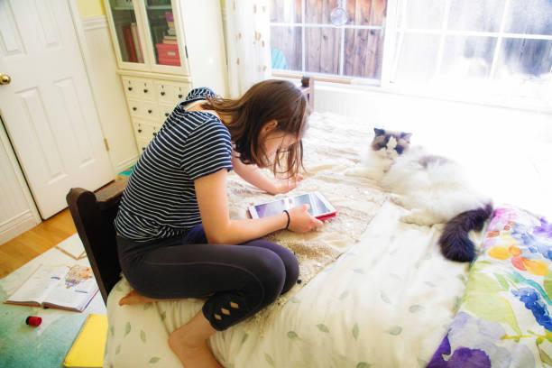 Weibliche Teenager einkaufen online auf ihrem Bett mit ihrer Katze an ihrer Seite – Foto