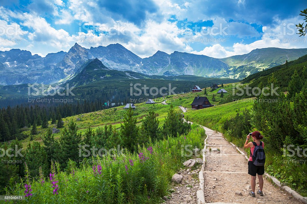 Female tourist taking picture in mountains stock photo