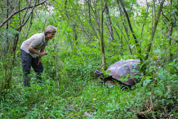 Touristinnen mit Galapagos Riesenschildkröte in natürlichem Waldlebensraum – Foto